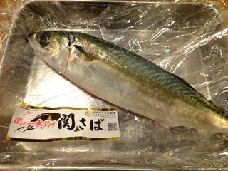 DSCF5605.JPG